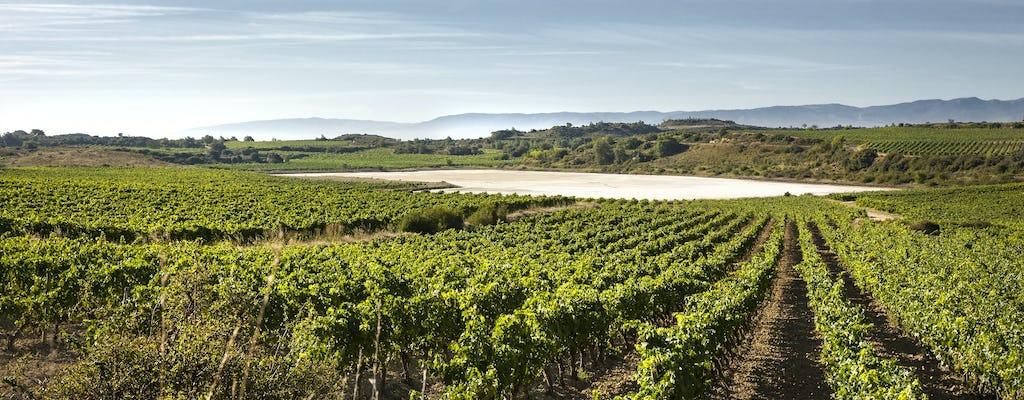 Visita à vinícola La Rioja com almoço tradicional de Bilbau