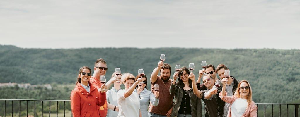Wijntour vanuit Ljubljana