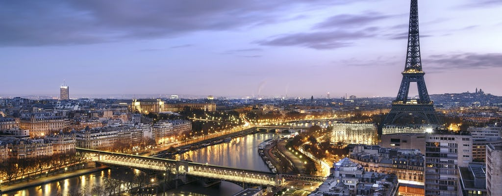 Combo tickets for Eiffel Tower and Evening Illuminations Cruise