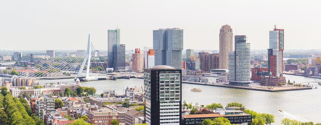 Gran tour dell'Olanda con Rotterdam, Delft e L'Aia