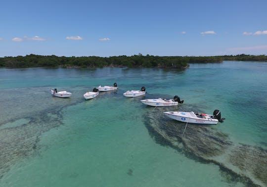 Key West safari snorkel eco tour