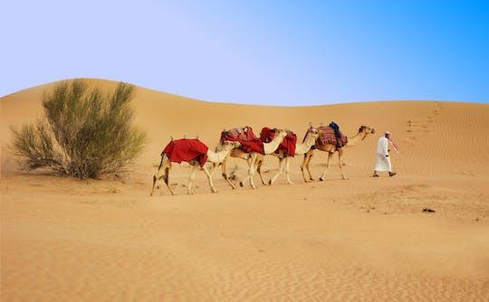 Safari mattutino di mezza giornata a Dubai, giro in quad di 30 minuti, sandboarding e giro in cammello