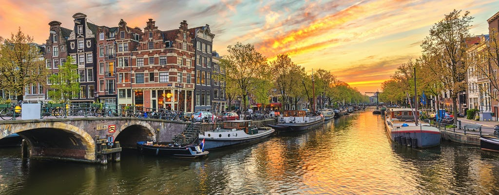 Amsterdam city and countryside private day trip