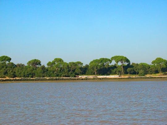 Passeio de caiaque pelo parque nacional de Doñana