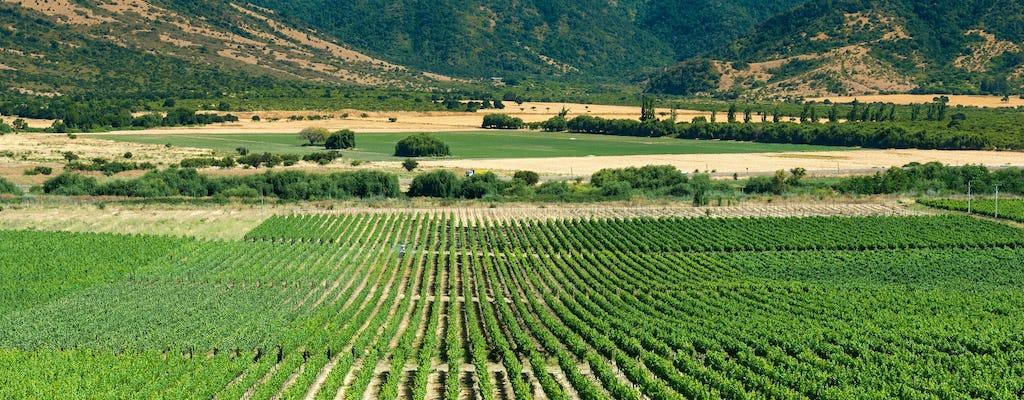 Долине Кольчагуа полный день винный тур из Сантьяго с дегустацией