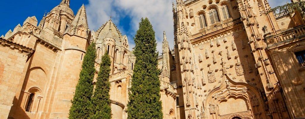 Tour di un'intera giornata ad Avila e Salamanca da Madrid