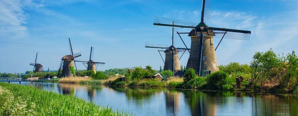 Tour privado de molinos de viento de Rotterdam y Kinderdijk