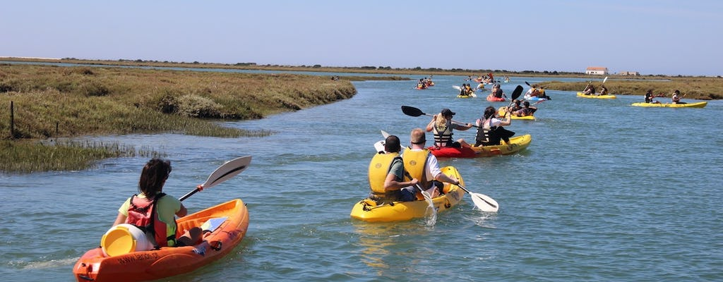 Ria Formosa guided kayak tour from Faro