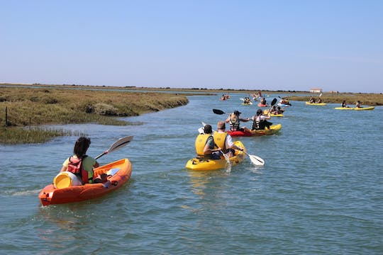 Tour guidato in kayak di Ria Formosa da Faro