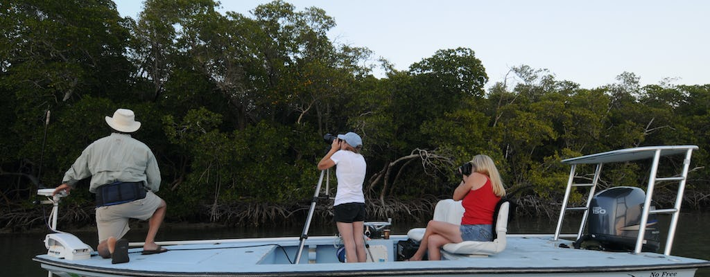 Private Everglades bird watching and photography safari boat tour