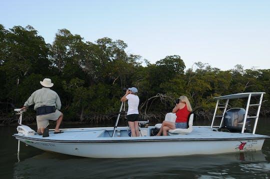 Excursion privée en bateau d'observation des oiseaux et de photographie dans les Everglades