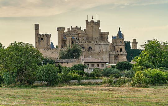 Olite Royal Palace  and Ujue medieval village half-day tour from Pamplona