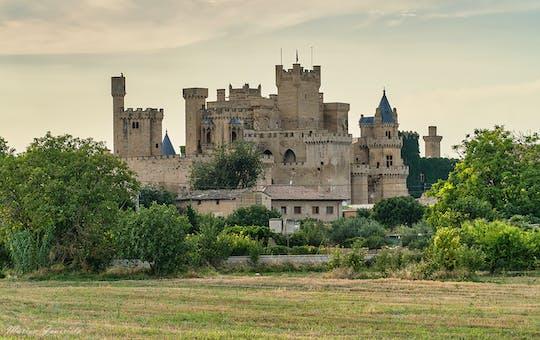Excursión de medio día al Palacio Real de Olite y al pueblo medieval de Ujue desde Pamplona