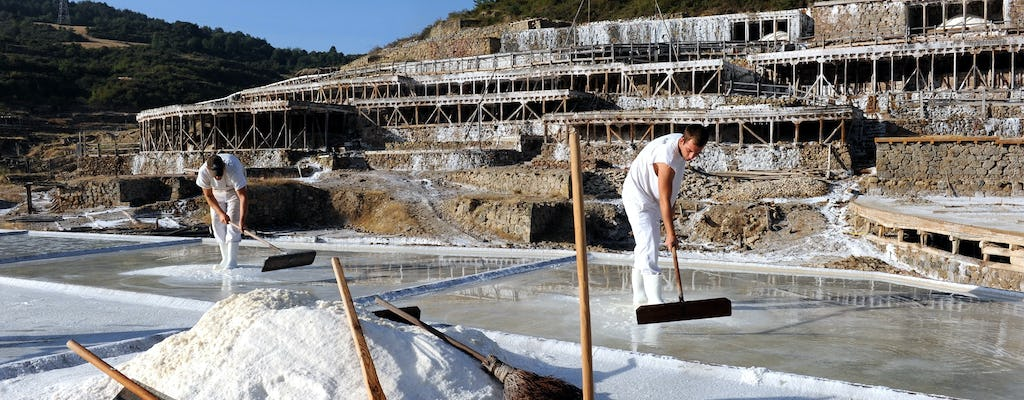 Vitoria and Añana Salt Valley full-day tour from Pamplona