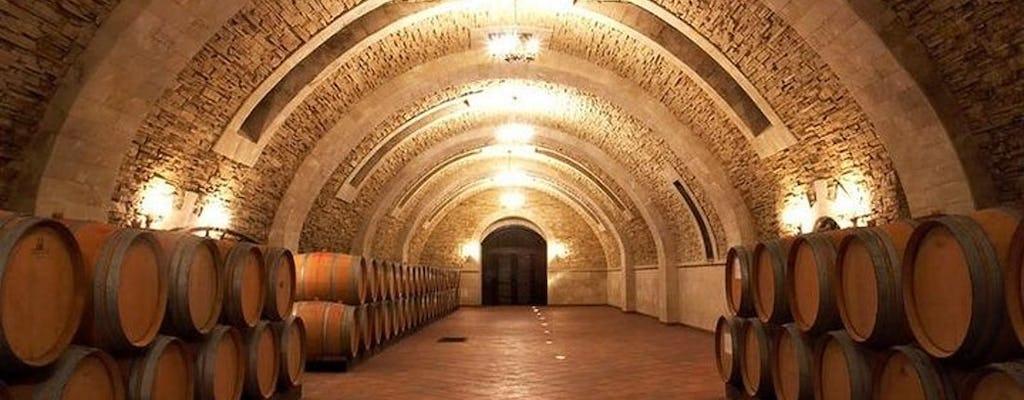 Tour del vino alla cantina Chateau Purcari e Asconi da Chisinau