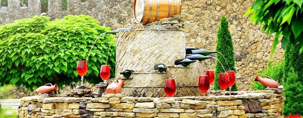 Tour privado do vinho à vinícola Milesti Mici saindo de Chisinau