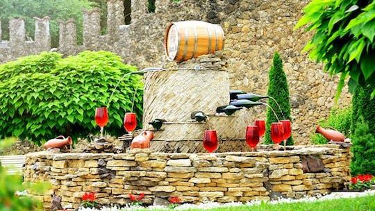 Tour privado de vinos a la bodega Milesti Mici desde Chisinau