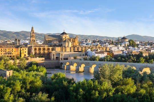 Zwiedzanie z przewodnikiem i bilety do meczetu w Kordobie i dzielnicy żydowskiej