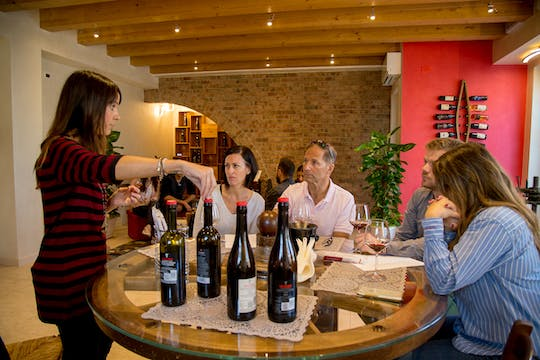 Tour of 3 wine cellars in Valpolicella with lunch