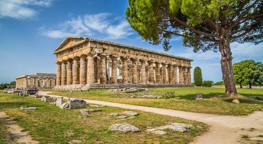 Visita guiada a los templos de Paestum y al museo