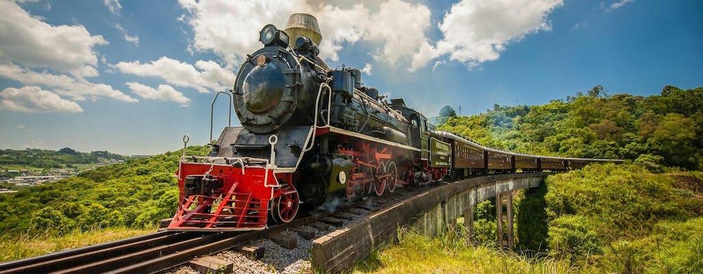 Tour del vino con treno e parco epico italiano