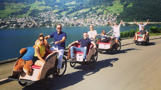 Lucerne cultural electric cargo bike tour
