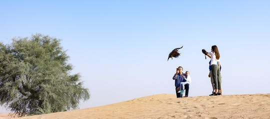 Private Dubai falconry safari with optional breakfast