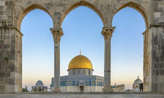 Tour dei momenti salienti di un'intera giornata a Gerusalemme da Tel Aviv