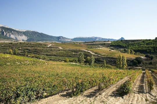 Wizyta w winnicy w La Rioja z degustacją i tradycyjnym lunchem z Pampeluny