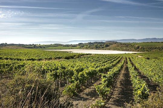 Wycieczka do dwóch winnic w La Rioja z Pampeluny