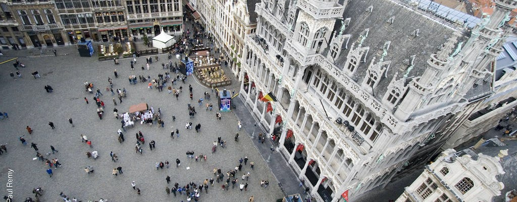 Half-day guided tour of Brussels