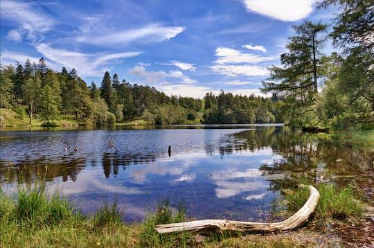 Viagem guiada ao Lake District com chá de creme