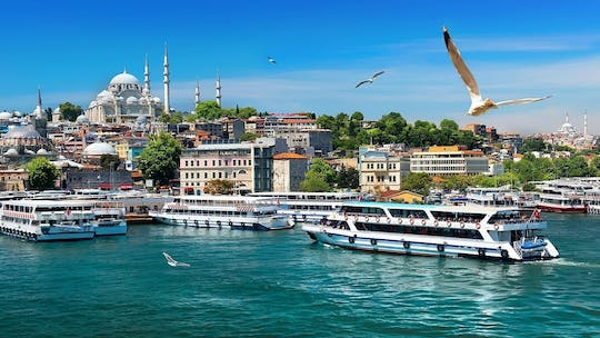 Istanbul combo tour: Old City and Bosphorus cruise
