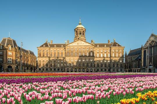 Tour privado en bicicleta por la histórica Ámsterdam de 3 horas