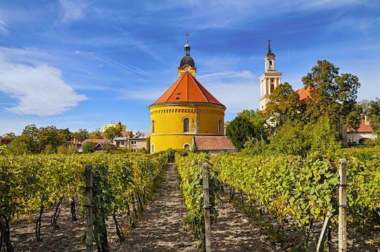 Pequena excursão de vinho dos Cárpatos de Bratislava