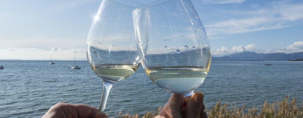 Tour privado Sirmione e experiência com vinhos Lugana