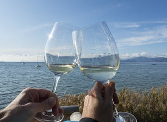 Sirmione private tour and Lugana wine experience