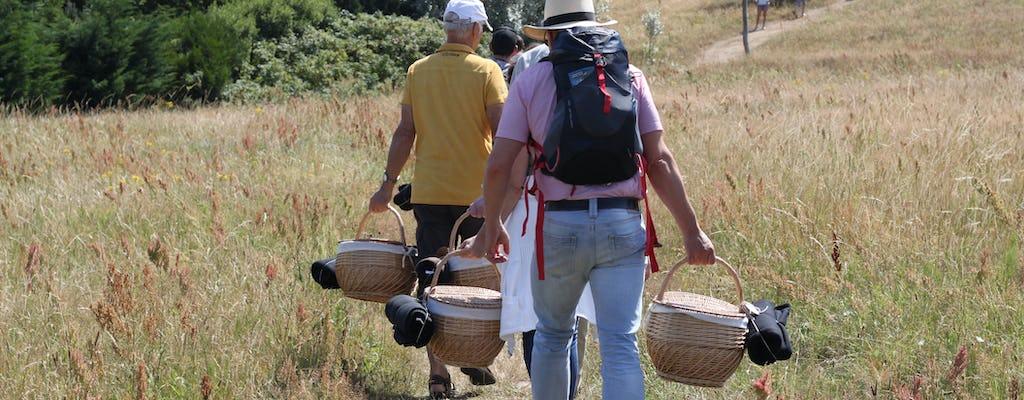 Weisse Düne Segelturn mit Picknicktour nach Rügen