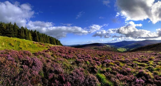 Glendalough, Wicklow and Kilkenny day tour from Dublin