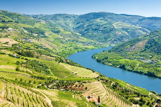 Douro Valley 4x4 full-day tour with wine tasting