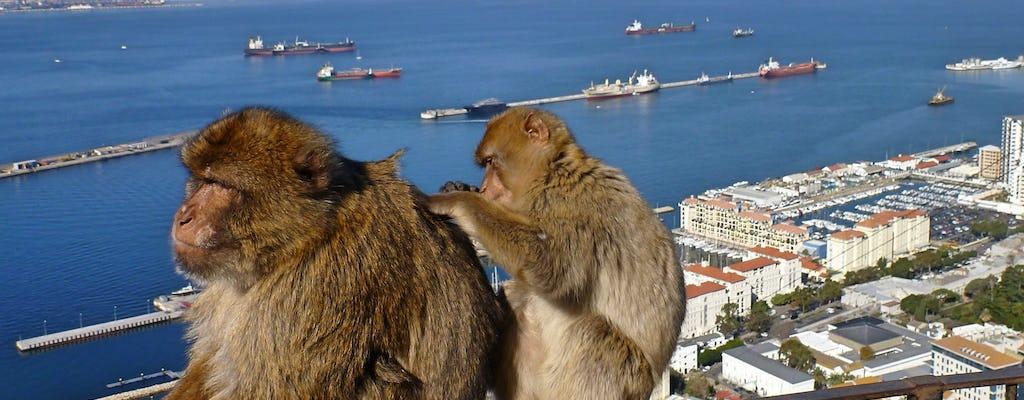 Excursión de un día a Gibraltar desde Granada