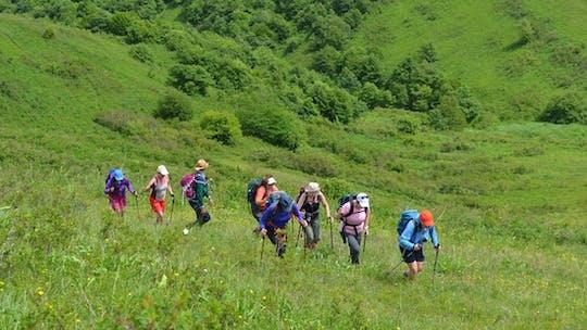 Пеший поход в Национальный парк Дилижан из Еревана