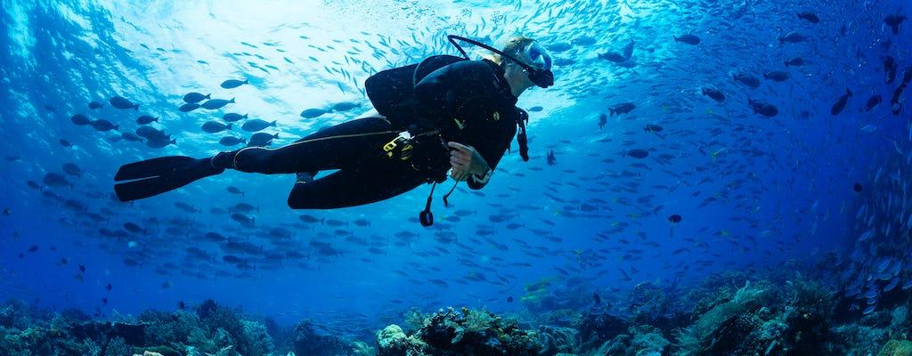 Dalla costa nord: esperienze subacquee a Zanzibar