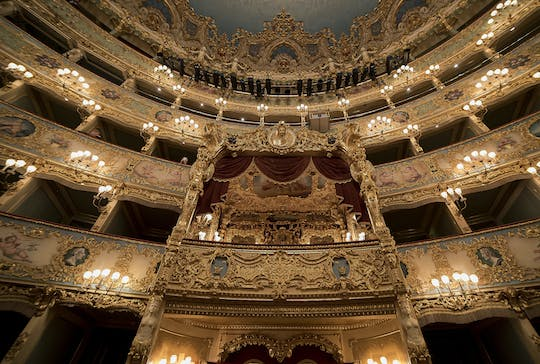 La Fenice theater private tour in Venice