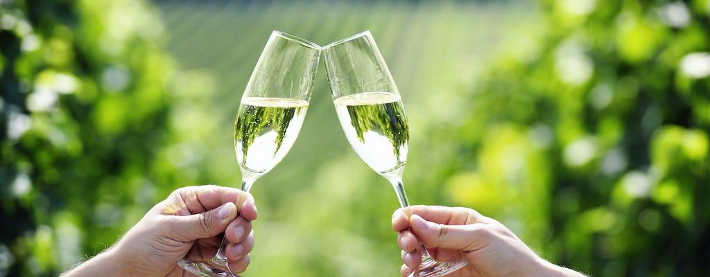 Un giorno in Champagne da Parigi