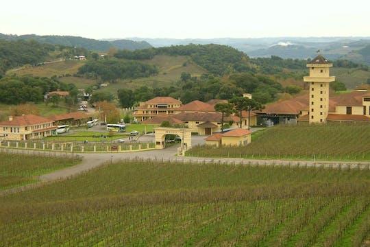 Гран Ресерва винный тур с дегустацией