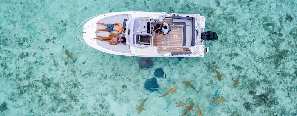 Crucero por la laguna azul de Bora Bora