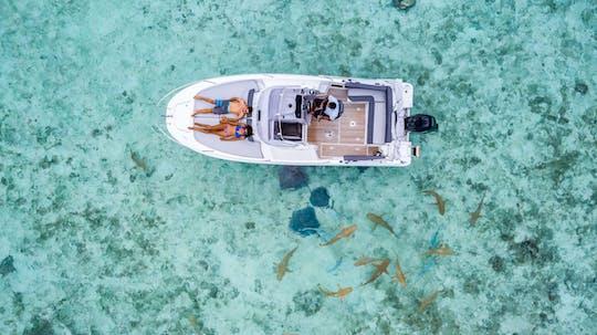 Bora Bora blue lagoon cruise