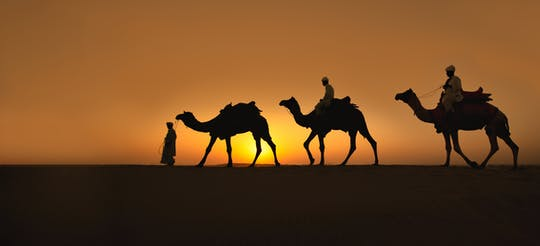 Doha sunset desert safari with camel ride and sandboarding