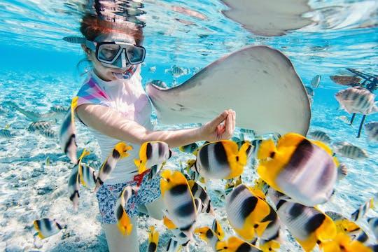 Excursão particular de snorkeling na lagoa em Bora Bora